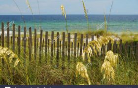 Photograph Of The Blue Green Gulf Of Mexico As Seen From A Dune Fence Dbxe98